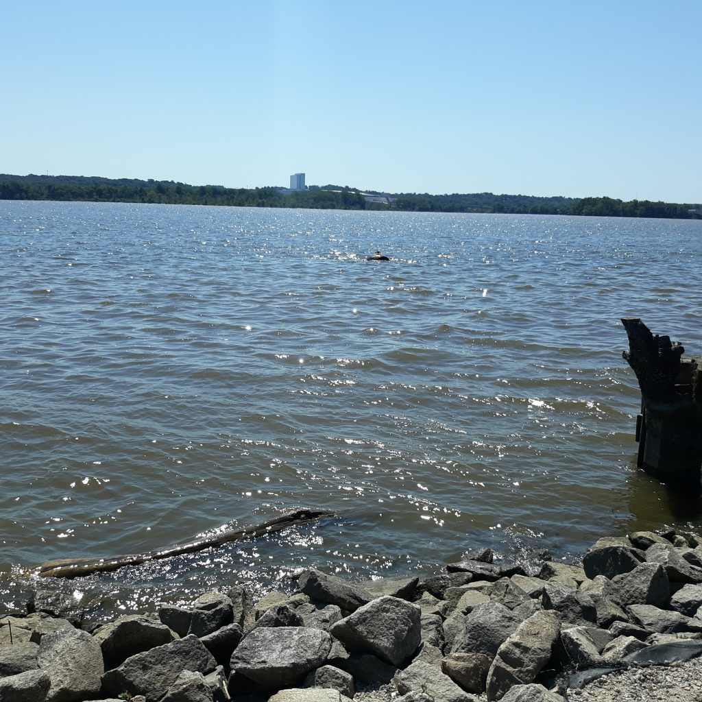 View of the Potomac River's choppy waters from the Alexandria shore.  Maryland is across the river.